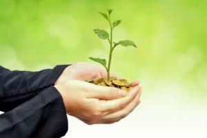 corporate responsibility - tree planting